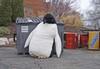 Sunkist_penguin